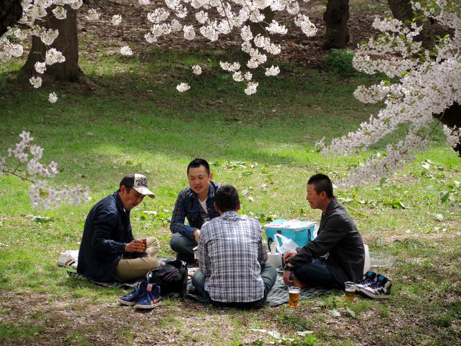 Japan April 2014 462