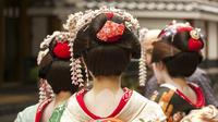 Japan Sakura Tour 6 Days Rob Dyer The Real Japan