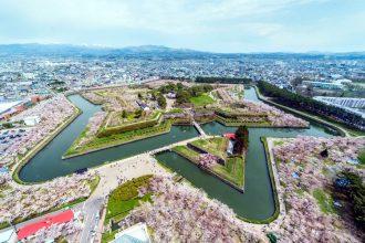 sakura hanami cherry blossom viewing The Real Japan Rob Dyer