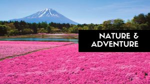 travel category nature & adventure The Real Japan Rob Dyer
