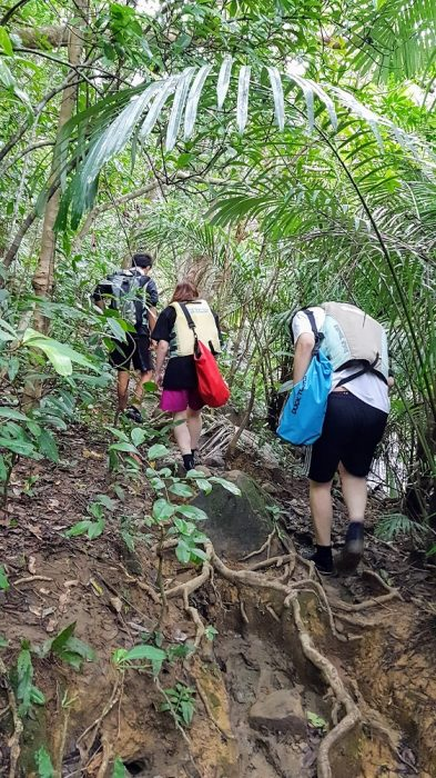 kayaking and trekking on Iriomote The Real Japan Rob Dyer