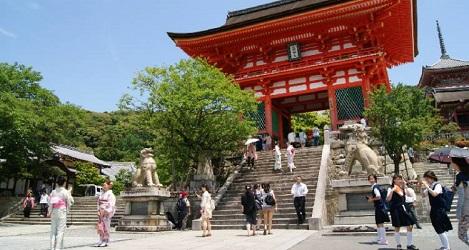 Tokyo to Tokyo tour The Real Japan Rob Dyer Tour Radar