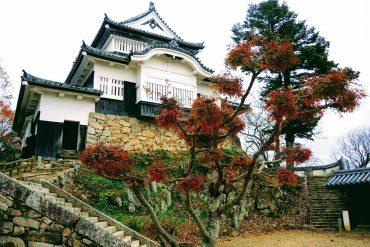 Bitchu Matsuyama Castle The Real Japan Rob Dyer