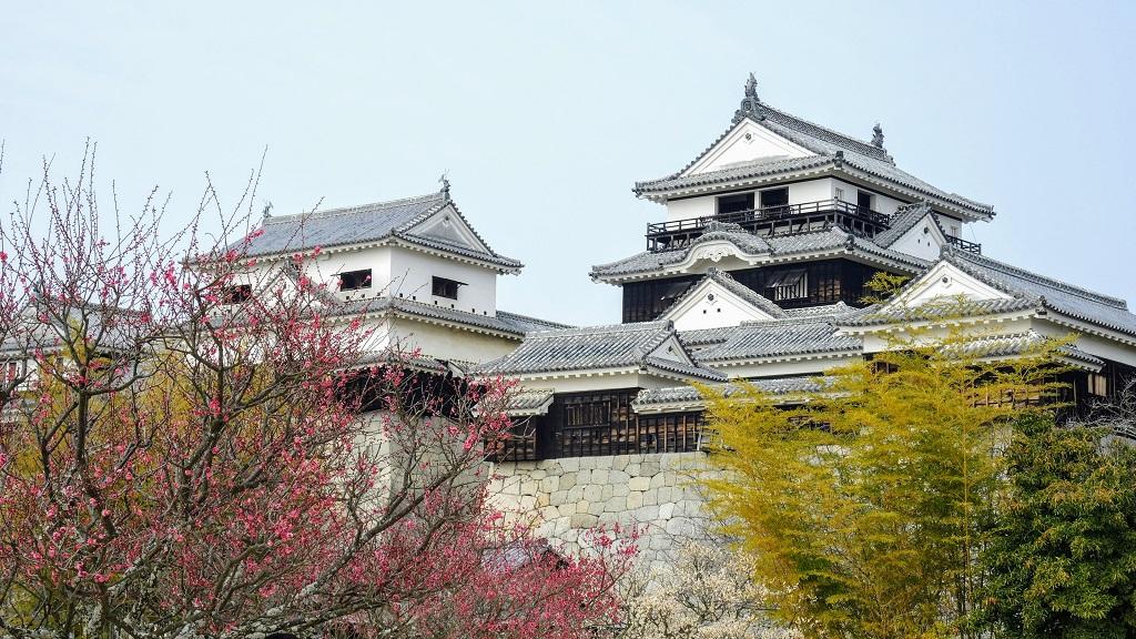 Matsuyama Castle The Real Japan Rob Dyer