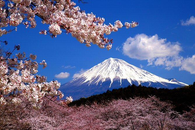 virtual Mt. Fuji tour The Real Japan