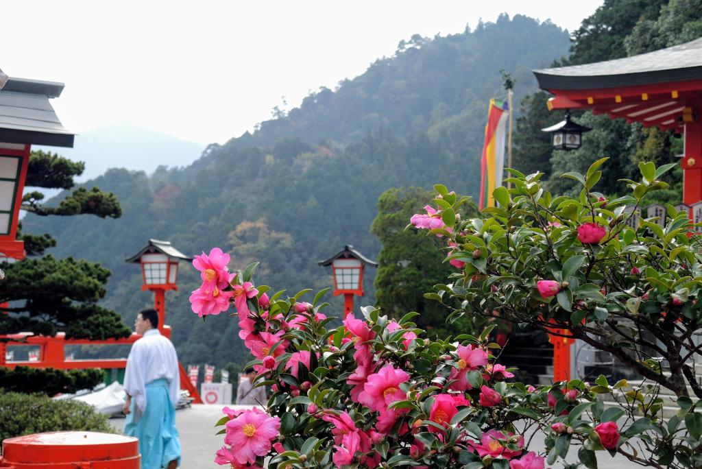 Taikodani Inari Shrine Tsuwano Shimane The Real Japan Rob Dyer
